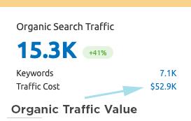 Website-SEO Organic Traffic Value